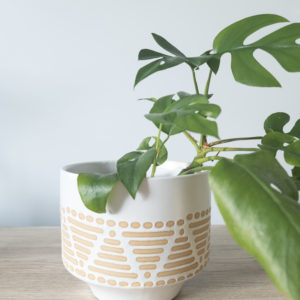 white ceramic pot with hand painted peach dots and lines