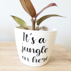 its a jungle in here