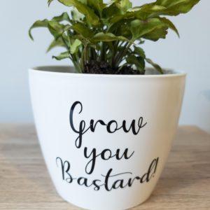 Grow you Bastard!