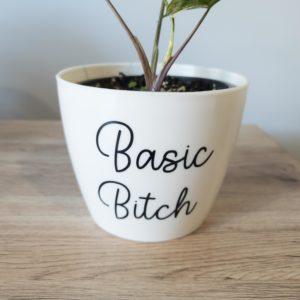 Basic Bitch Pun Pot